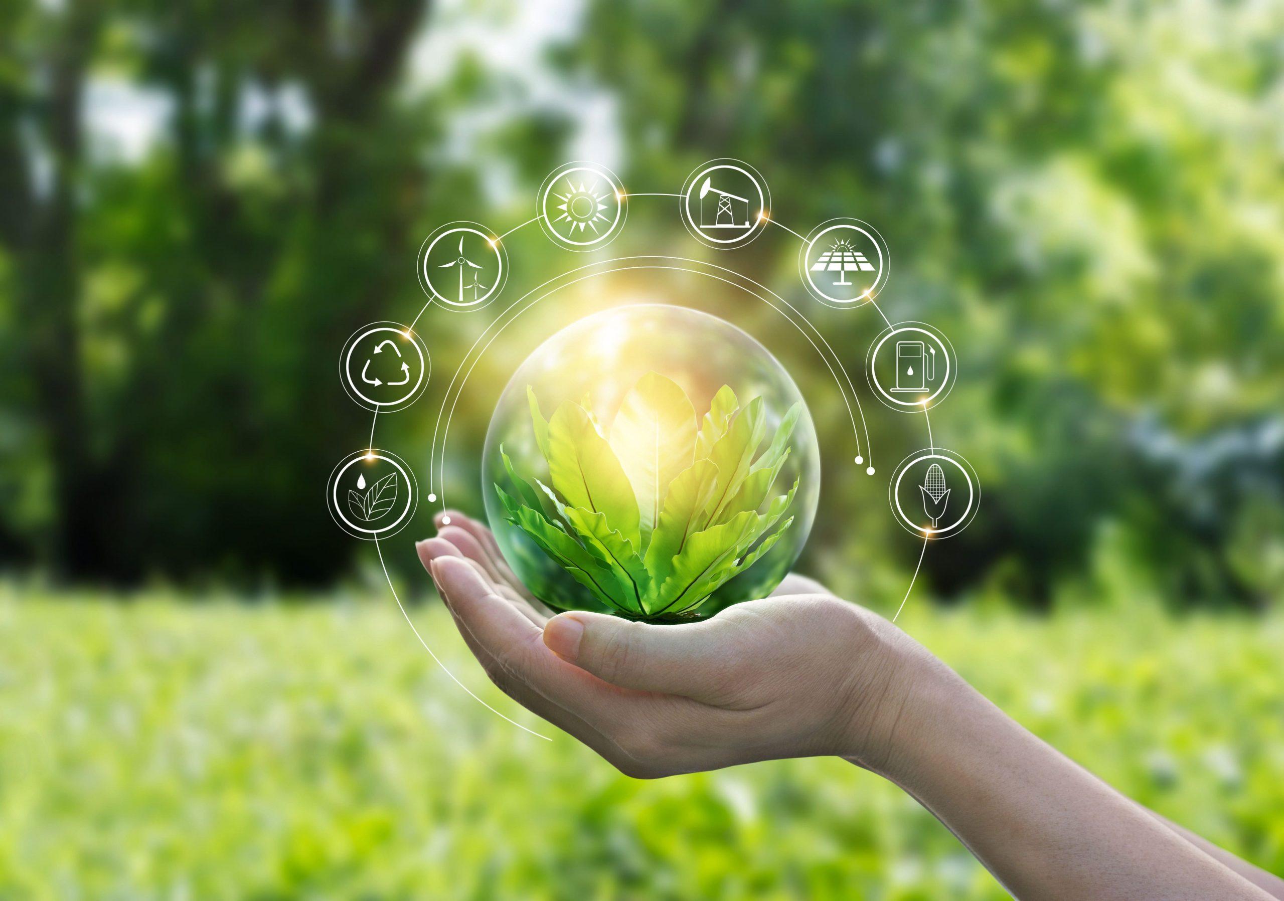 sustainabililty committee